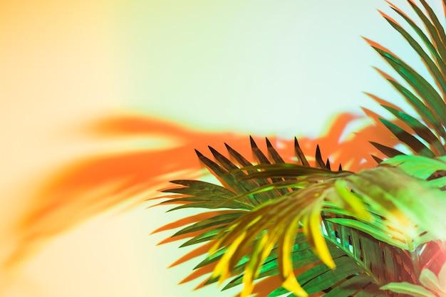 Groene bladeren in zonlicht op gele achtergrond Gratis Foto