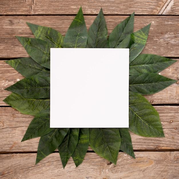 Groene bladeren op houten achtergrond met leeg kader Gratis Foto