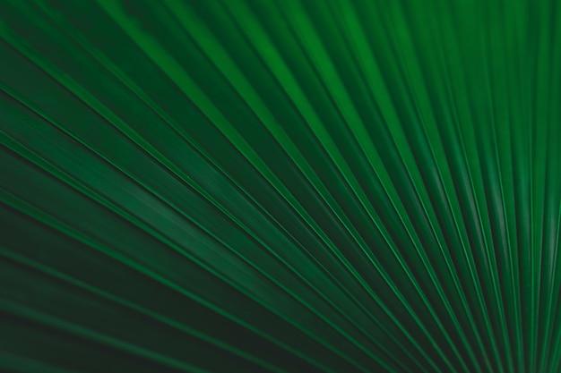 Groene bladeren patroon achtergrond Premium Foto