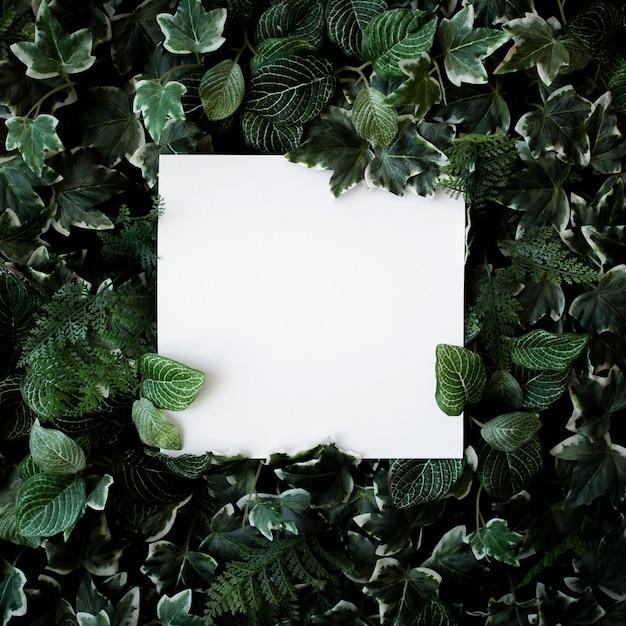 Groene bladerenachtergrond met witboekkader Gratis Foto