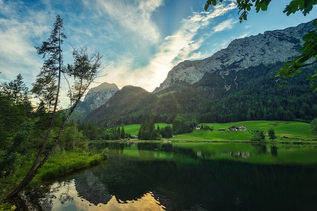 Groene bomen dichtbij meer en berg onder blauwe hemel overdag Gratis Foto