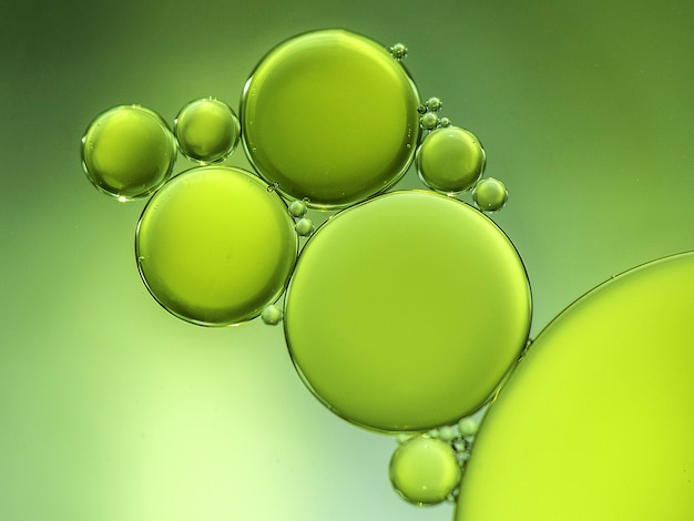 Groene cirkels Premium Foto