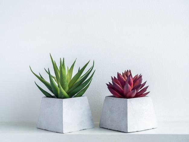 Groene en rode succulente planten in moderne geometrische cementplanters op witte houten plank op wit Premium Foto
