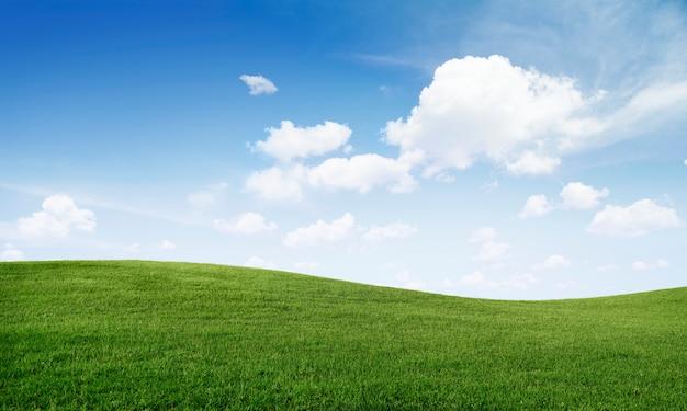 Groene grasheuvel en blauwe hemel Gratis Foto