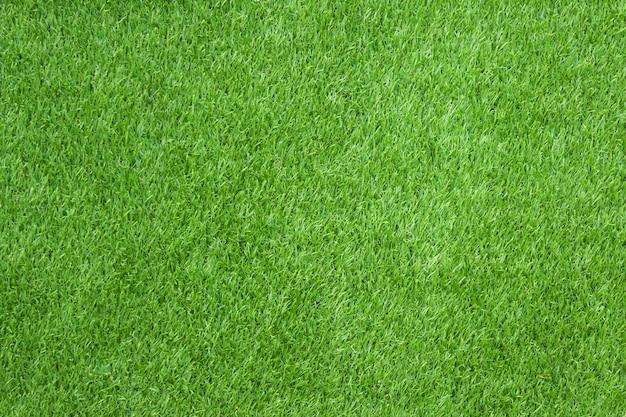 Groene grastextuur voor achtergrond. Premium Foto
