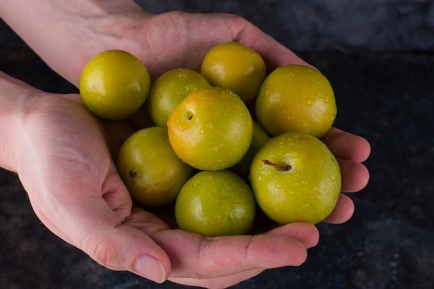 Groene kersenpruimen en appels in de handen van een persoon Gratis Foto