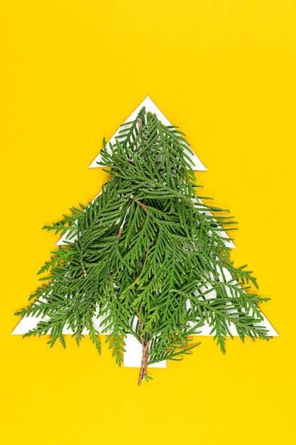Groene kerstboom gemaakt van naaldboomtakken op pastel geel oppervlak Premium Foto