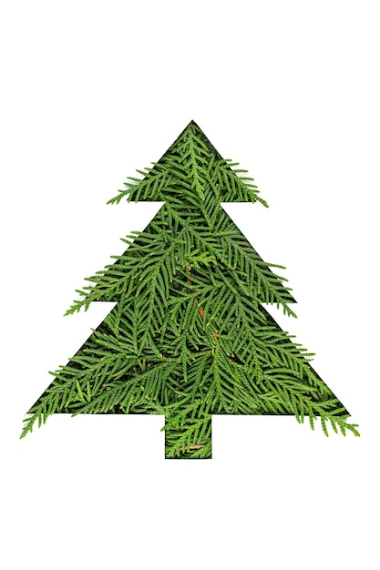 Groene kerstboom gemaakt van naaldboomtakken Premium Foto