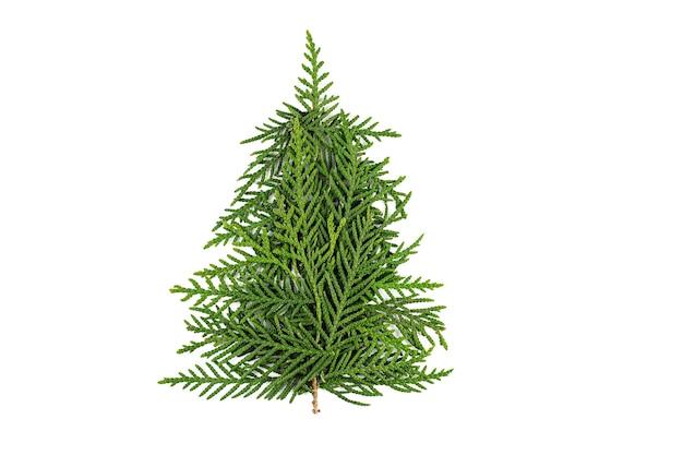 Groene kerstboom gemaakt van naaldhout takken op witte achtergrond. minimale compositie achtergrond. nieuwjaar en kerstmis concept. Premium Foto