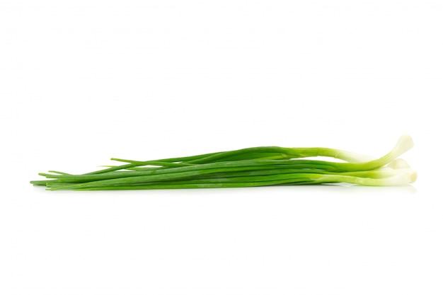Groene lente-ui op witte achtergrond Premium Foto