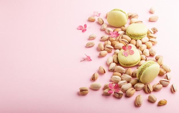 Groene macarons of makaronscakes met pistachenoten op pastelkleur roze achtergrond. zijaanzicht, kopieer ruimte. Premium Foto