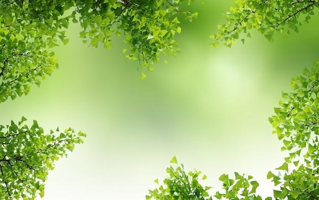 Groene natuurlijke achtergrond, groenachtergrond Premium Foto