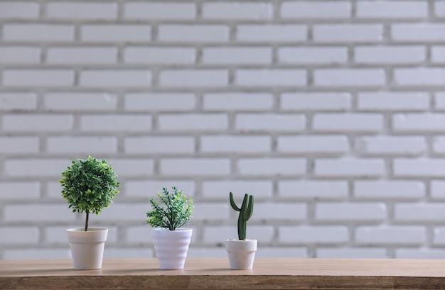 Groene pot op de houten tafel met witte muur. Gratis Foto