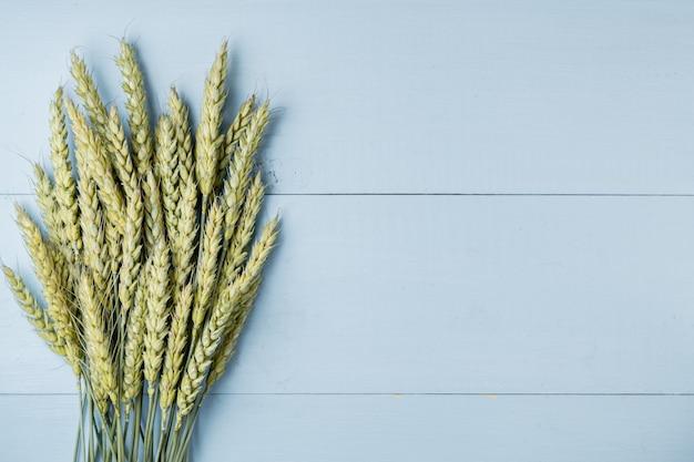 Groene tarweoren op blauwe houten achtergrond Premium Foto
