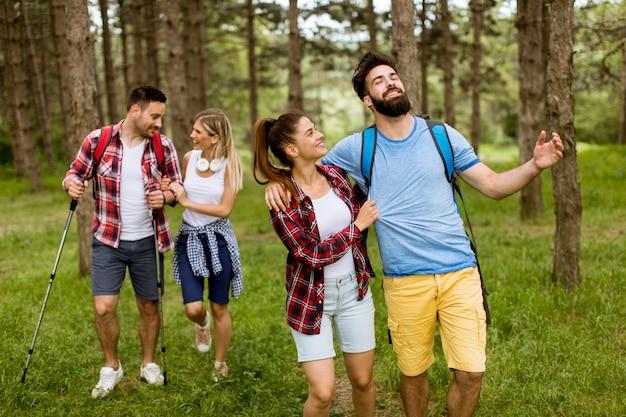 Groep van vier vrienden die samen door een bos wandelen Premium Foto