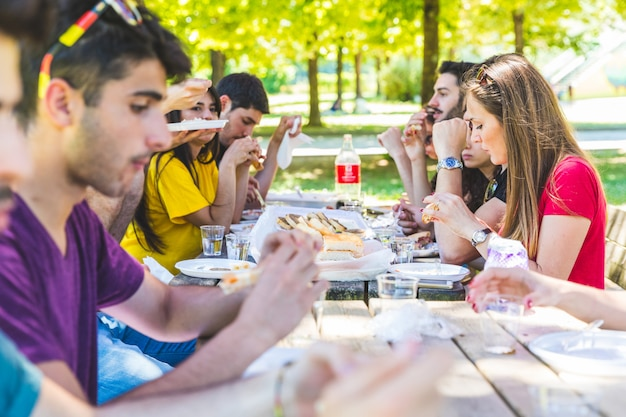 Groep vrienden die picknick hebben bij park Premium Foto