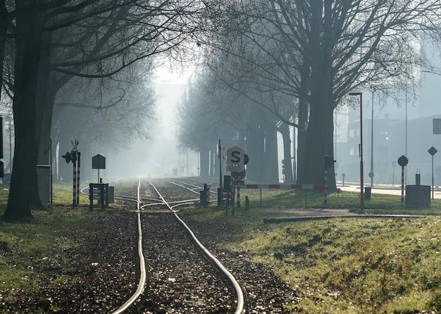 Groothoek schoot een spoorweg door het bos Gratis Foto