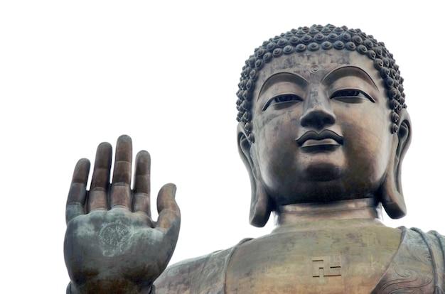 Grote boeddha op het eiland lantau Premium Foto