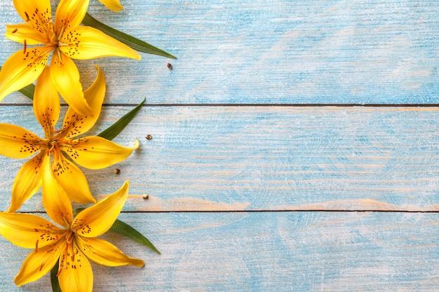 Grote gele bloemenlelies op oude blauwe shabby achtergrond met kopie ruimte, floral wenskaart, plat lag, Premium Foto
