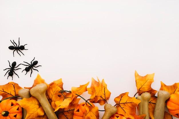 Halloween concept met ruimte en mieren Gratis Foto