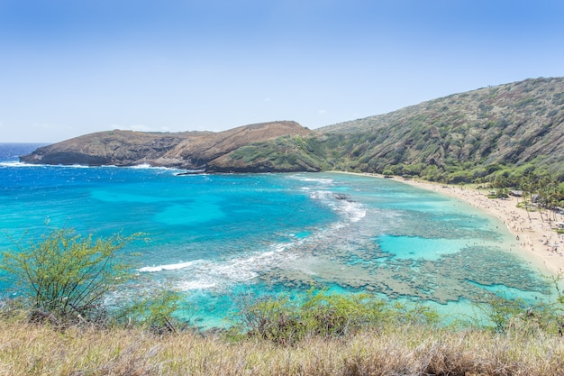 Hanauma-baai, snorkelparadijs op hawaï Premium Foto