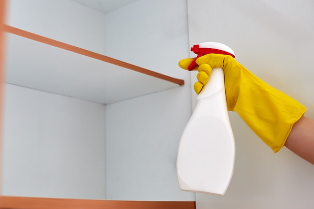Hand bespuitend pesticide op een kakkerlak thuis Premium Foto