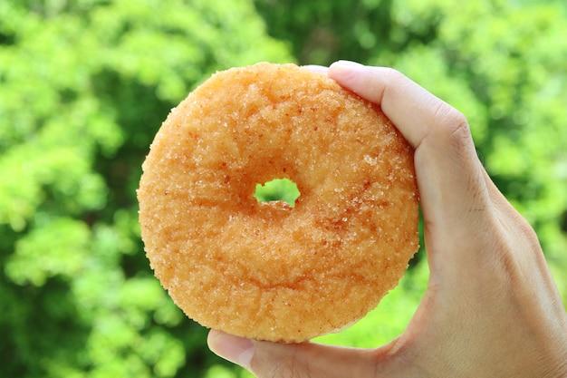Hand die een sugar cinnamon donut met onscherp groen gebladerte op achtergrond houden Premium Foto
