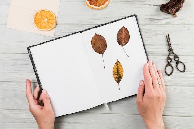Hand die met de hand gemaakt boek met droge bladeren op bureau houdt Gratis Foto