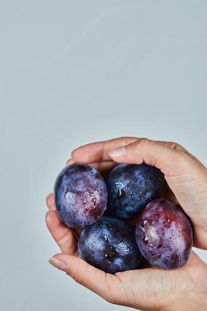Hand met verse pruimen op grijs. Gratis Foto