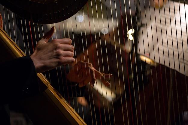 Handen die de harp spelen Premium Foto