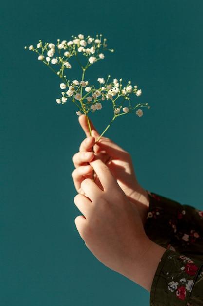 Handen met lentebloemen Gratis Foto