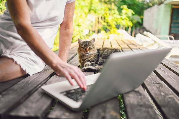 Handen van een oudere senior vrouw die een pluizige straatkat aait en buiten in de zomertuin op een laptop online werkt. Premium Foto