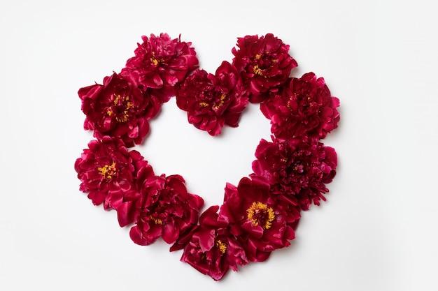 Hart frame gemaakt van rode pioenroos bloemen met kopie ruimte voor tekst op wit Premium Foto
