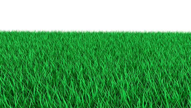 Helder groen gazon. 3d-afbeelding Premium Foto