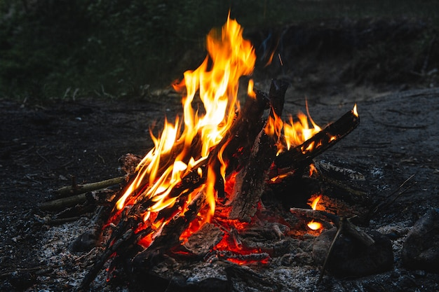 Helder heet kampvuur op een donkere nacht Premium Foto