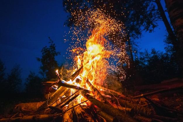 Helder vuur op een donkere nacht in een bos-open plek. Premium Foto