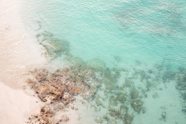 Helderblauwe zee met koralen en een zandstrand Gratis Foto