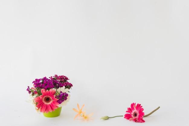Heldere bloemen dichtbij pot Gratis Foto