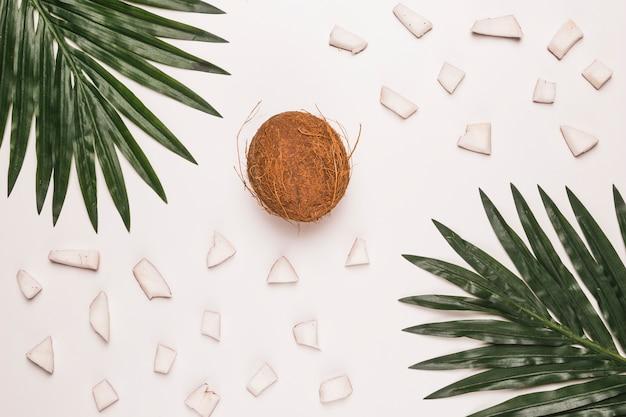Hele en gehakte kokosnoot met palmbladeren Gratis Foto
