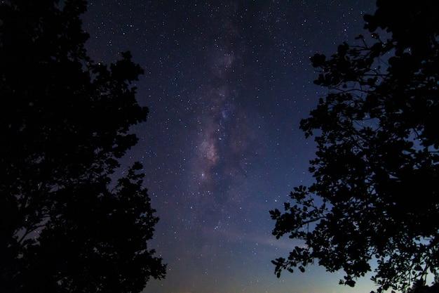 Hemelachtergrond bij nacht en milkyway Premium Foto
