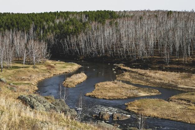 Herfst berg rivier stroom landschap. bergrivier herfst uitzicht. herfst berg rivier panorama. Premium Foto