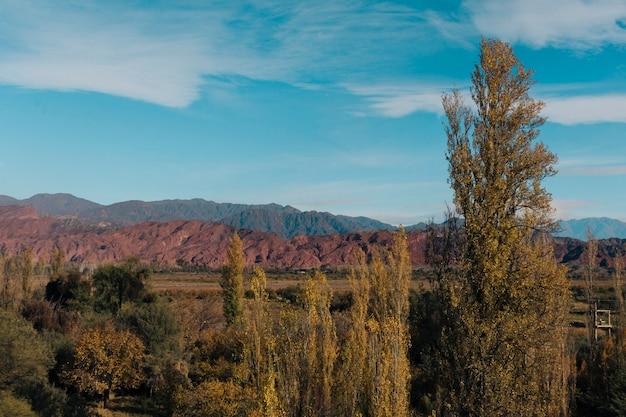 Herfst bos en bergen landschap met blauwe lucht Gratis Foto