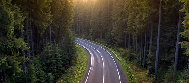 Herfst landschap, verharde weg in het bergbos. gele en rode gietbomen en groene coniferen zorgen voor een schilderachtig contrast. Premium Foto