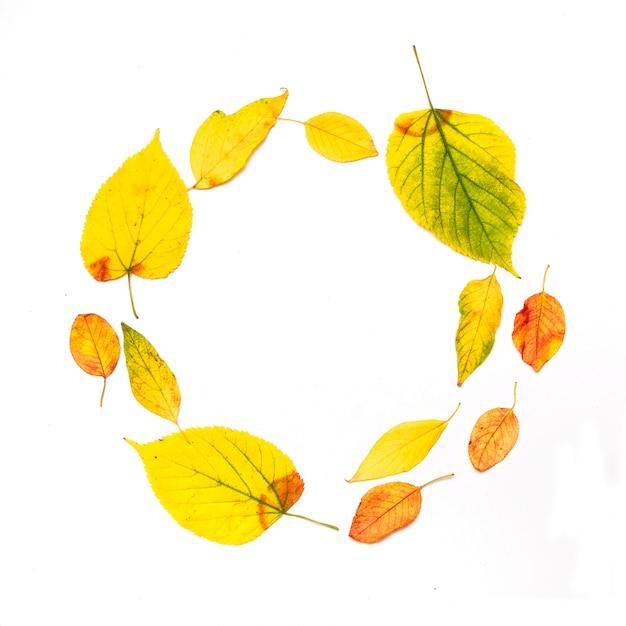 Herfst samenstelling. frame dat van de bladeren van de de herfstesdoorn wordt gemaakt die op wit worden geïsoleerd Premium Foto