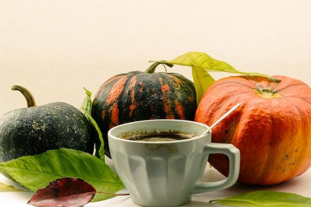 Herfst samenstelling pompoen en herfst gebladerte op een wit oppervlak Premium Foto