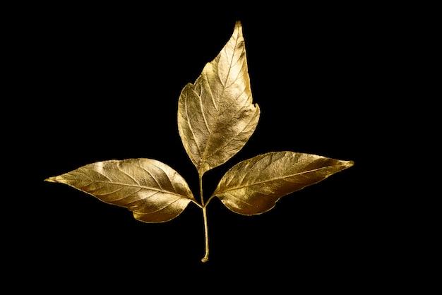 Herfst samenstelling van verschillende gouden bladeren en letters Premium Foto
