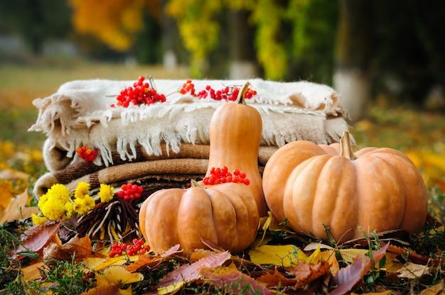 Herfst thanksgiving stilleven Premium Foto