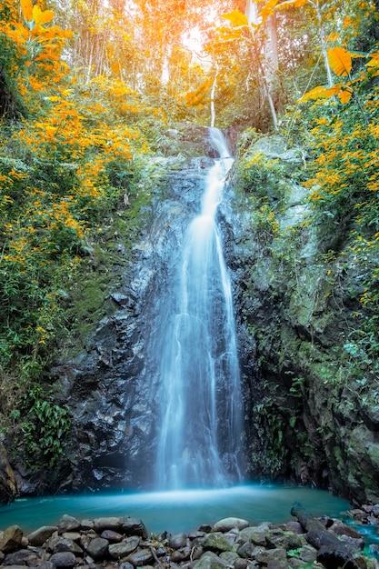 Herfst waterval Premium Foto