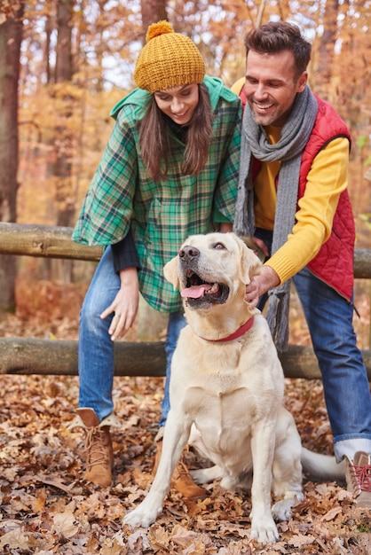 Herfstwandeling met schattige hond Gratis Foto