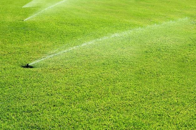 Het bronwater van de grastuin op een rij Premium Foto